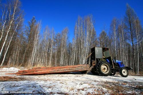 黑龙江木材等进出口再提速
